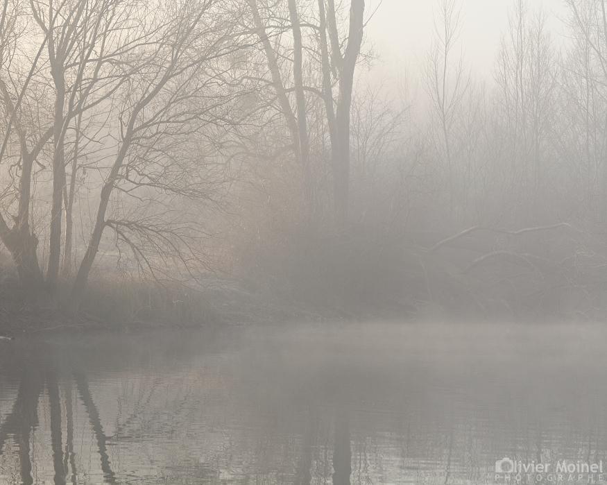 Étang bordé d'arbre dans le brouillard, un matin d'hiver